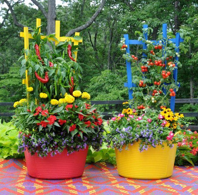 container garden. Container Vegetable Gardens Make Growing Your Own Veggies Easy - Our Community Now At Colorado Garden