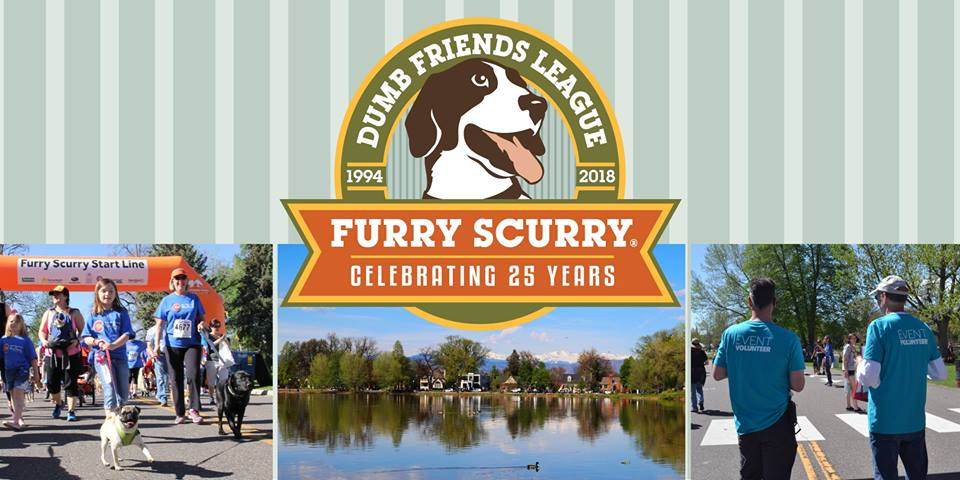 furry scurry